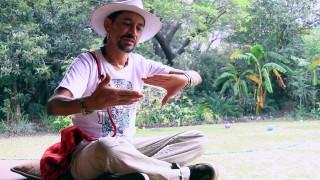 Yo lo creo – Santiago Pando