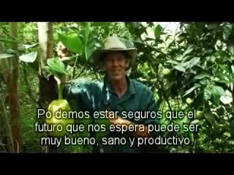 Estableciendo Bosques Comestibles – Geoff Lawton