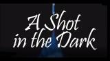 Un disparo en la oscuridad